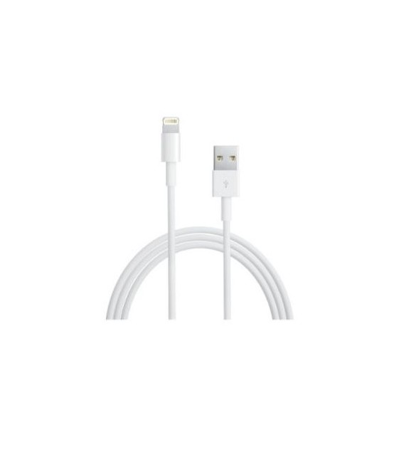 APPLE CABLE DATOS MD819ZMA